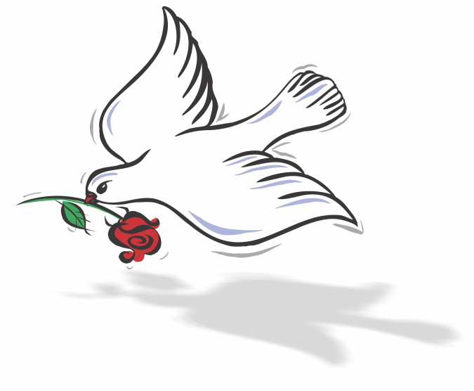 Dove carrying rose